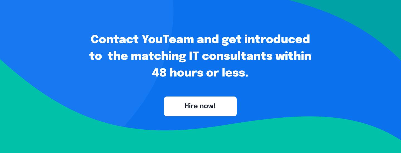 Hire IT consultants